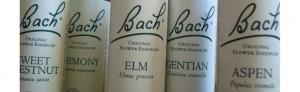 Flacons Fleurs de Bach