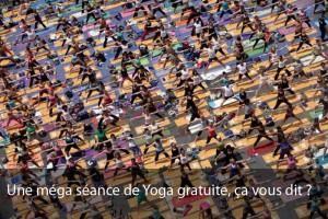 Journée internationale Yoga